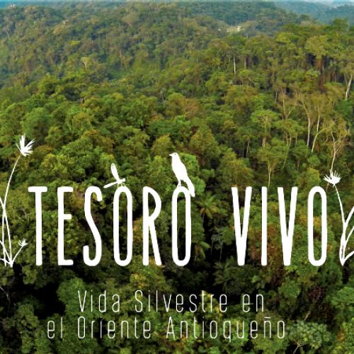 """Disfruta del documental """"TESORO VIVO"""" vida silvestre en el Oriente Antioqueño"""