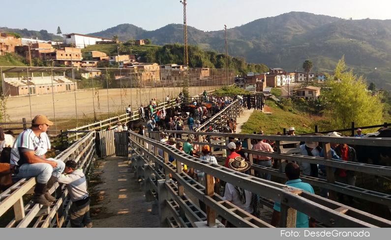 Photo of Feria de ganado de Granada, fue reubicada después de funcionar más de 120 años en el parque principal