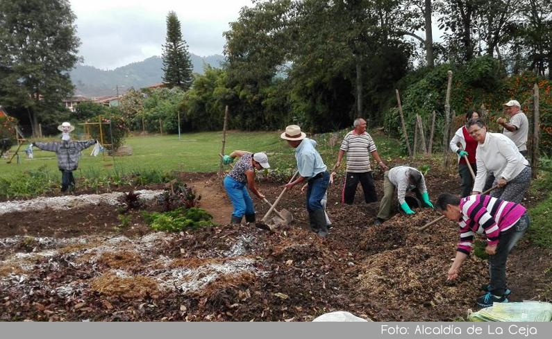 Photo of En La Ceja, 863 niños hacen parte de la construcción de huertas caseras para el programa de seguridad alimentaria USPA