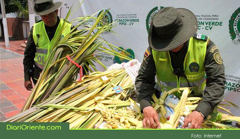 Photo of En Semana Santa, autoridades y entidades ambientales intensifican labores contra el tráfico de fauna y flora