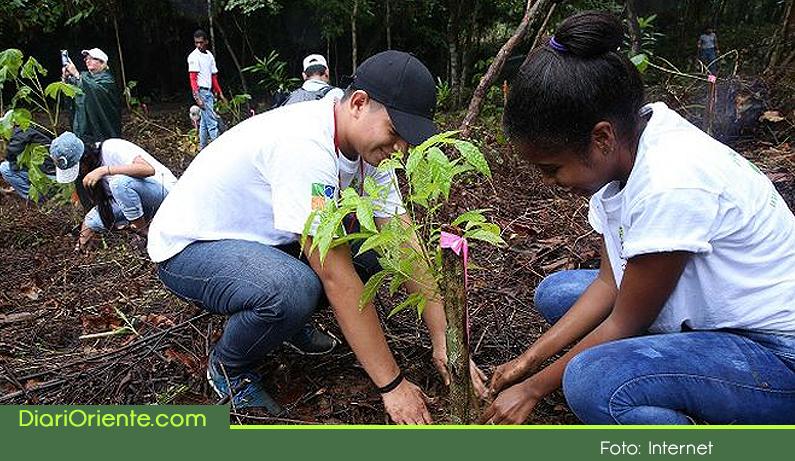Photo of En San Vicente, se firmó convenio para la reforestación rural y el cuidado del agua