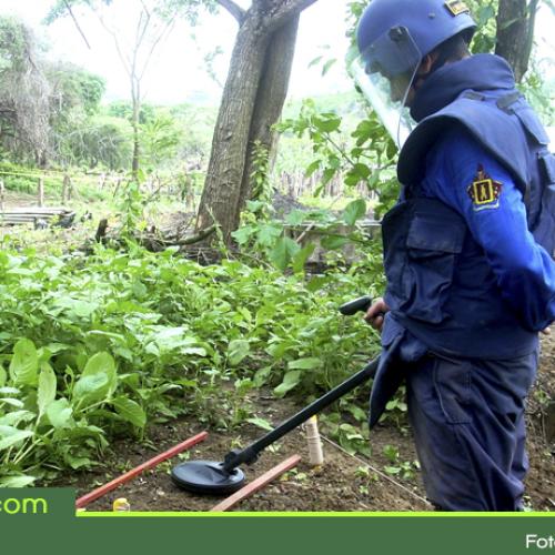 Este jueves Cocorná será el sexto municipio del Oriente en ser declarado libre de sospecha de minas antipersonal