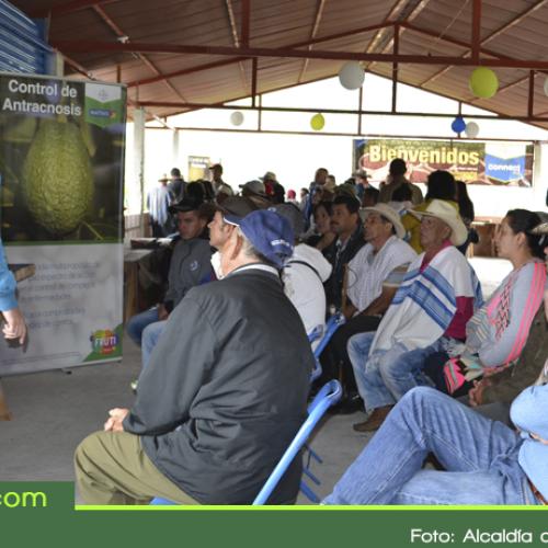 Sonsón fue sede del gran evento académico regional sobre el aguacate