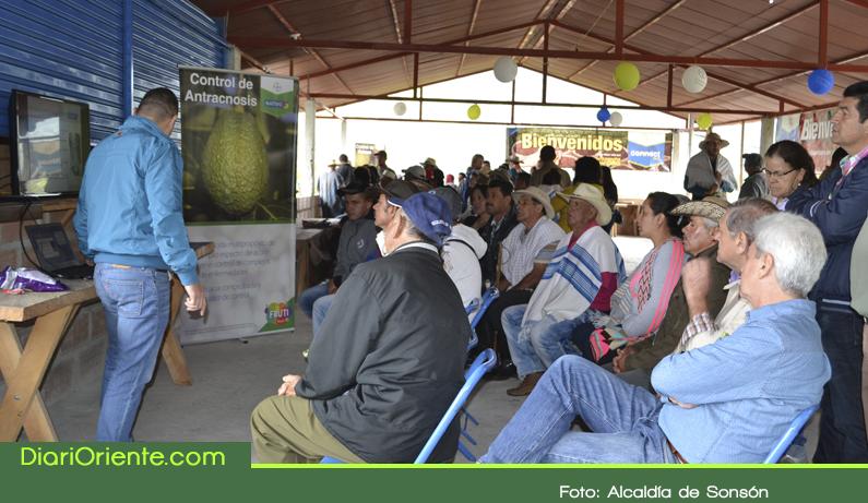 Photo of Sonsón fue sede del gran evento académico regional sobre el aguacate