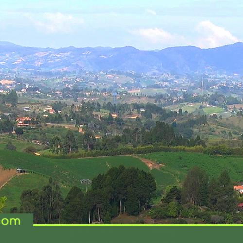 Ocho municipios de Antioquia sin homicidios en el 2017, tres de ellos en el Oriente Antioqueño