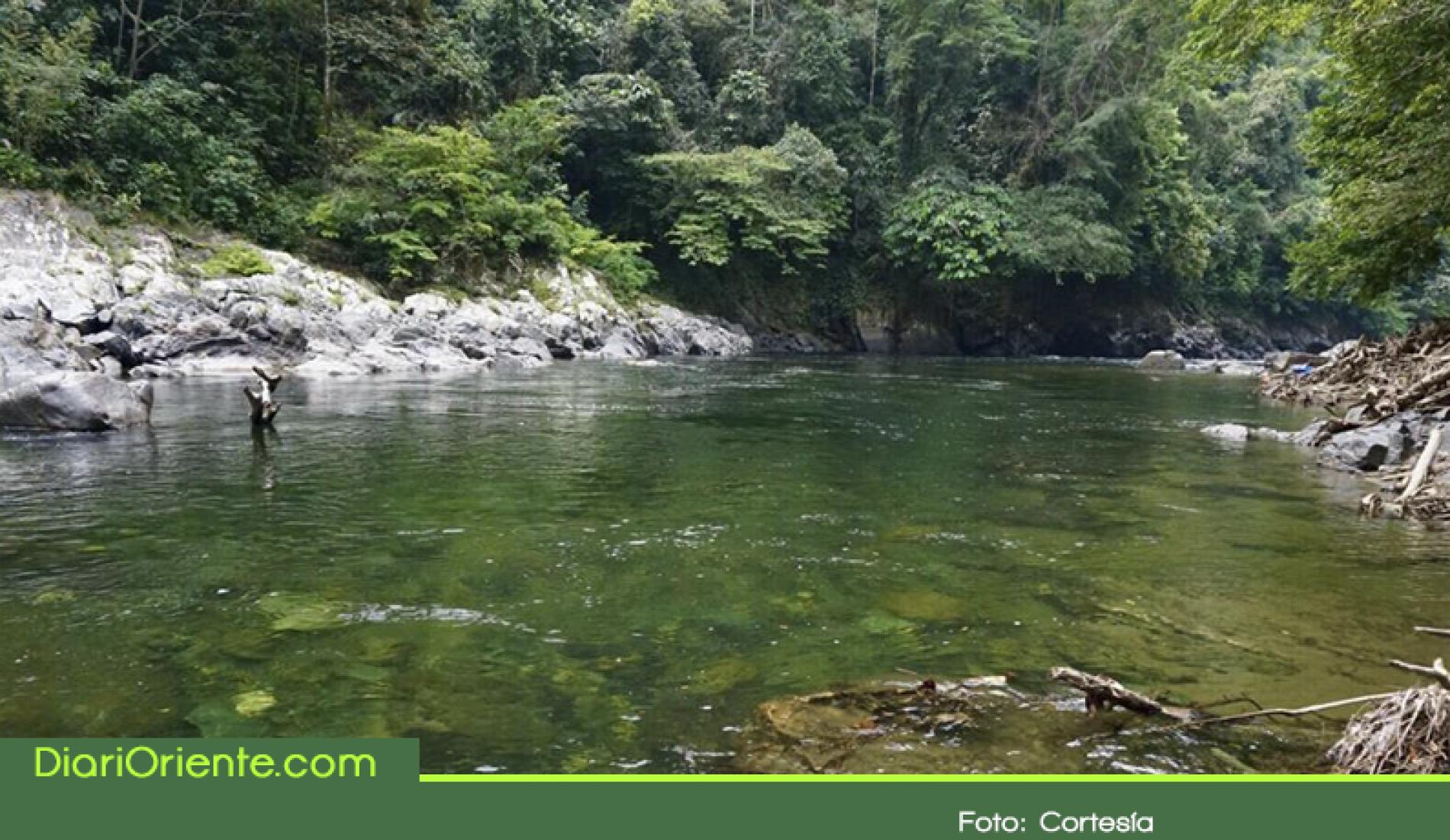 146 mil hectáreas de la jurisdicción de Cornare han sido declaradas áreas protegidas