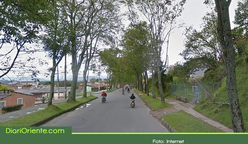 Photo of Tala de árboles revive polémica en Rionegro