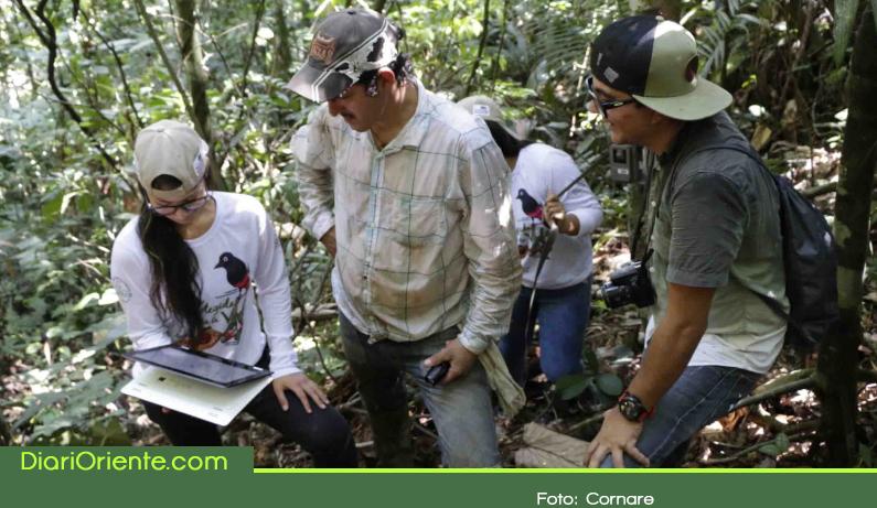 Photo of Campesinos participan en el inventario de biodiversidad del Oriente Antioqueño