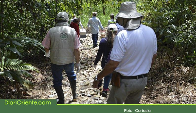 Photo of Por segundo año consecutivo Cornare ocupó el primer lugar entre las entidades ambientales del país