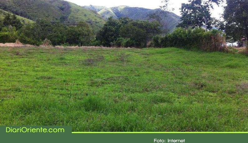 Photo of En dos años se titularon más de 200 terrenos baldíos en Sonsón