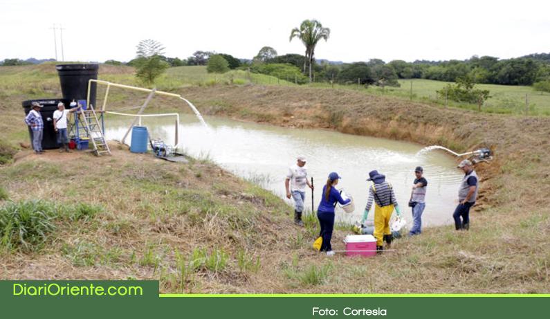 Photo of Cornare adelanta proyecto de recuperación de áreas deterioradas por minería