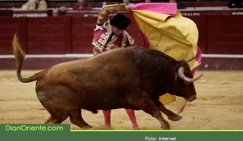 Photo of Se prohíbe corrida de toros en Rionegro