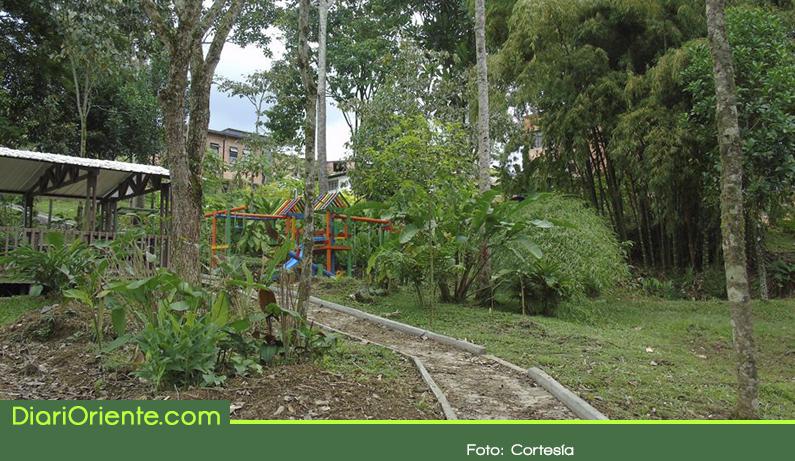 """Photo of El Oriente Antioqueño cuenta con un nuevo """"Bosque de Paz"""""""