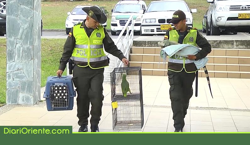 Photo of Autoridades inician controles para proteger fauna y flora en Semana Santa
