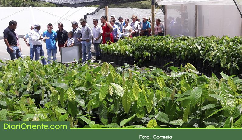 Photo of Gracias a la reparación colectiva, más de 90 familias del corregimiento de Puerto Venus mejoran su producción agrícola