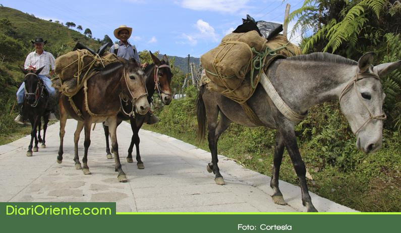 Photo of Antioquia supera meta de 1000 kilómetros de vías rurales pavimentadas