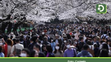 Photo of Coronavirus: cómo Japón ha logrado controlar el covid-19 sin recurrir al aislamiento general obligatorio