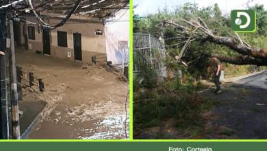 Photo of Inundaciones y árboles caídos, dejaron las lluvias de este sábado en el Oriente Antioqueño