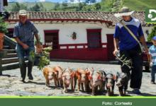 Photo of Los campesinos: nuestra mayor riqueza