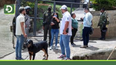 Photo of Rionegro: Buscan al responsable de envenenamiento masivo de perros en el barrio Quebrada Arriba