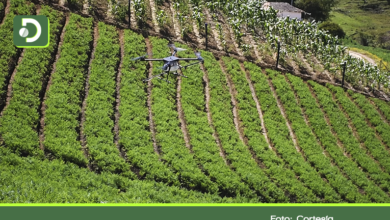 Photo of En El Santuario ya utilizan drones para fumigar cultivos