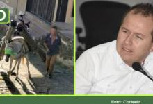 Photo of ¿Maltrato animal o fuerza de trabajo? Esto dijo el alcalde de San Francisco