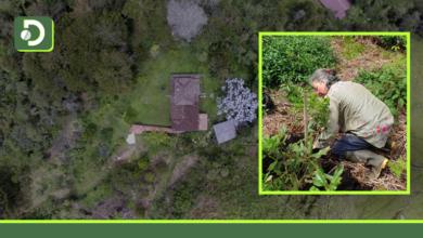 """Photo of En San Vicente, Gloria Jaramillo convirtió su propiedad en una Reserva Natural: """"Mi Reserva, mi Obra de Arte"""""""