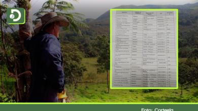Photo of Fundación revela lista de 27 empresas antioqueñas, investigadas o condenadas por despojo de tierras