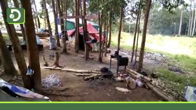 Photo of Rionegro: Desmontan cambuche donde vivían 17 personas en el sector del Puente Mejía