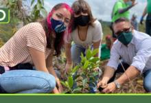 """Photo of """"Sembrar nos une"""", una iniciativa que en dos años, deja 2.000.000 de árboles sembrados en el Oriente"""