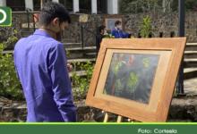 Photo of «Pequeños Mundos, Grandes Universos», exposición de arte que resalta la importancia de los insectos