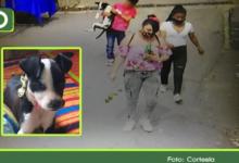 Photo of Así se robaron una mascota en Guarne: Familia pide que se la devuelvan